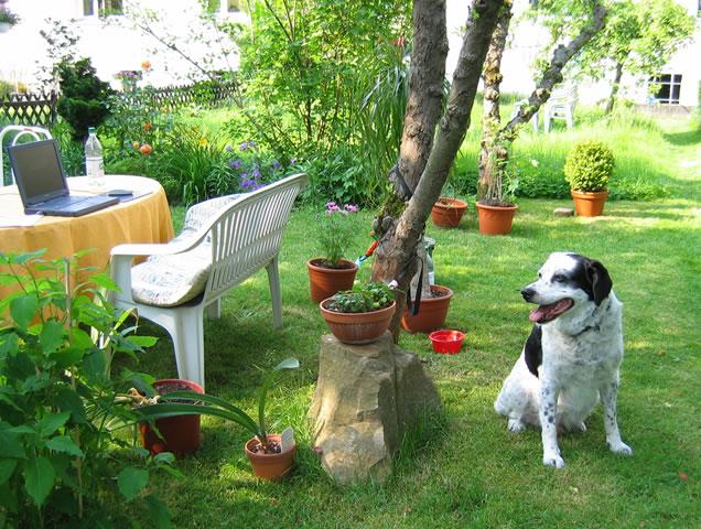 28.05.2005  Im Garten