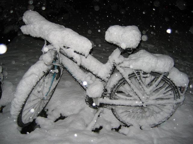 25.11.2005  Fahrrad