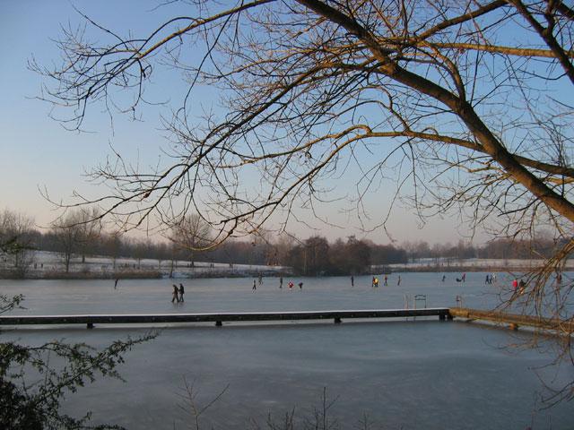 28.01.2006  Aasee ist zugefroren