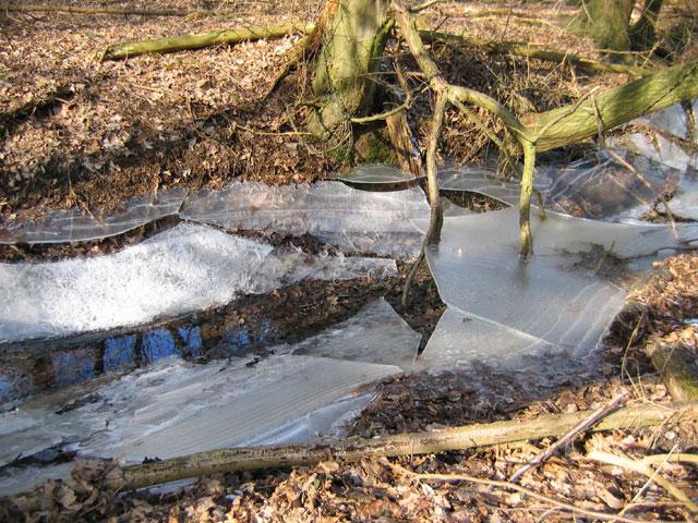 14.03.2006  gebrochenes Eis