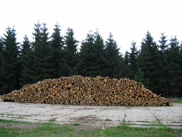 12.05.2006  Holzstapel, Altenberg