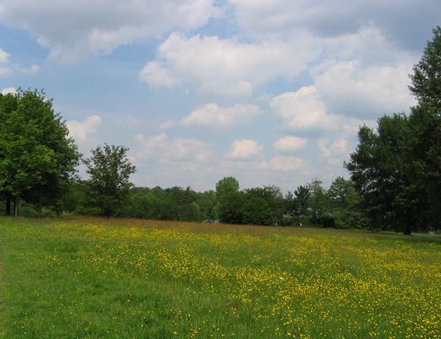 07.06.2006  Aaseewiese