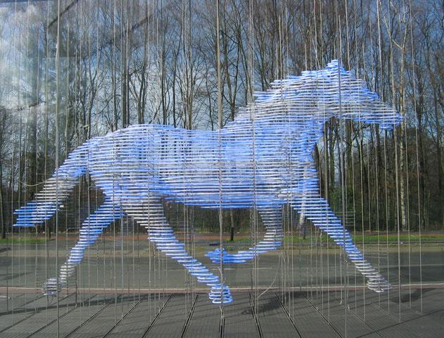 25.02.2007  Pferd