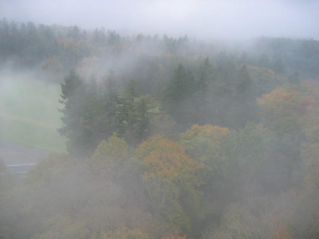 03.10.2007  Nebel im Hochwald