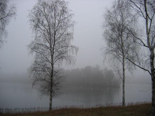 01.01.2008  Am Hiltruper See