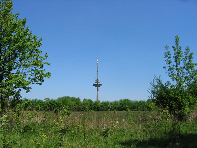 10.05.2008  Fernsehturm