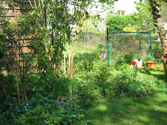 21.04.2009  Garten