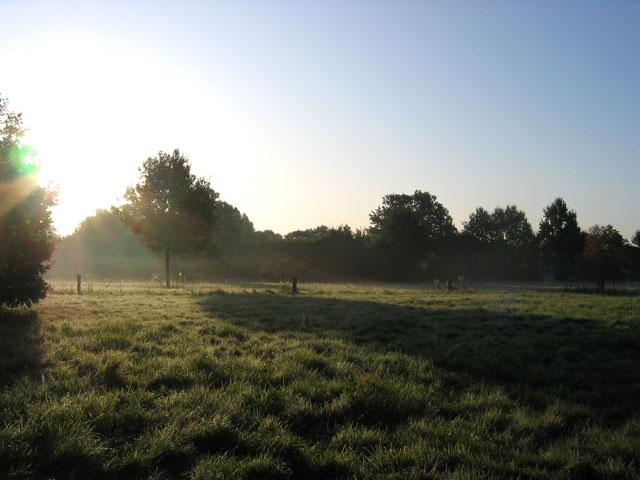 25.09.2009  Morgensonne