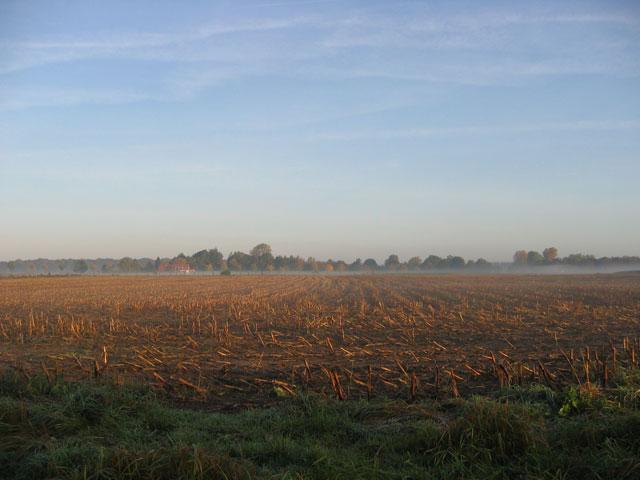 11.10.2009  Morgennebel