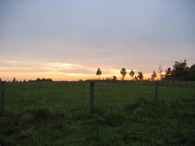 21.10.2009  Morgensonne