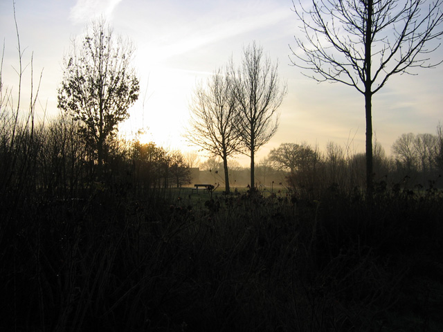 09.12.2009  Morgensonne