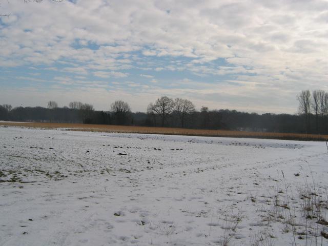 17.02.2010  Schneelandschaft