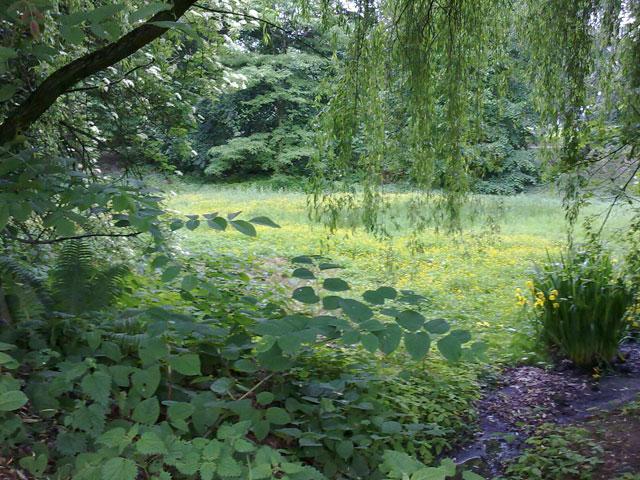 09.06.2010  Sentmaringer Park