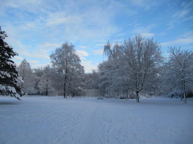21.12.2010  Schnee