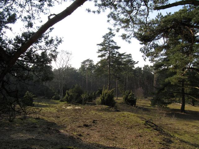 20.02.2011  Klatenberge