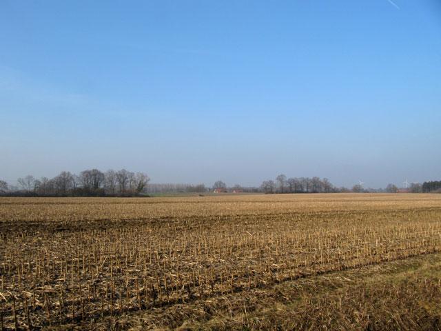 02.03.2011  Feld