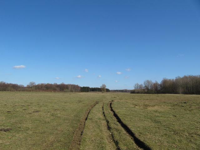 06.03.2011  Spuren