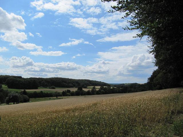 23.07.2011  Im Teutoburger Wald