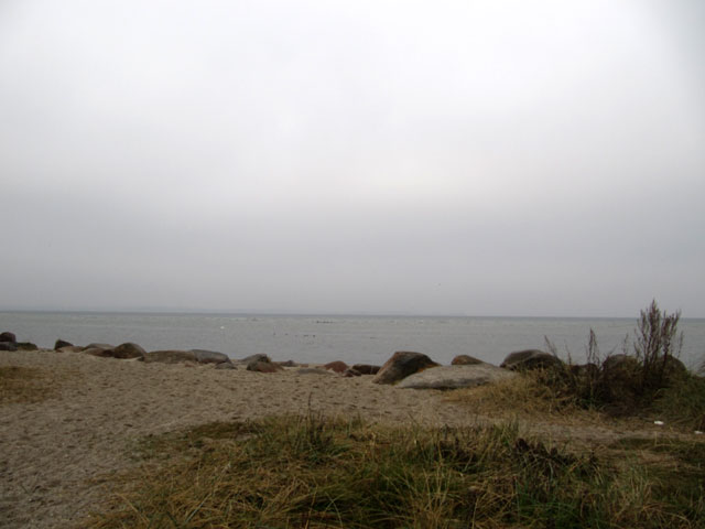 14.11.2011  Findlinge