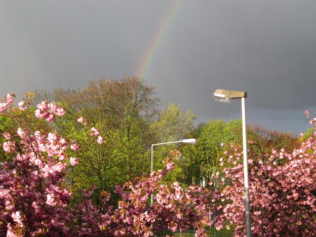 22.04.2012  Regenbogen