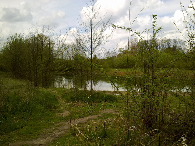 25.04.2012  Storch