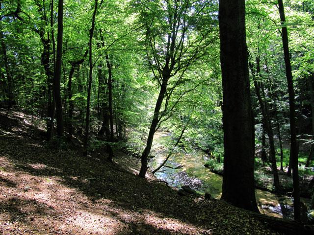 27.05.2012  Furlbachtal
