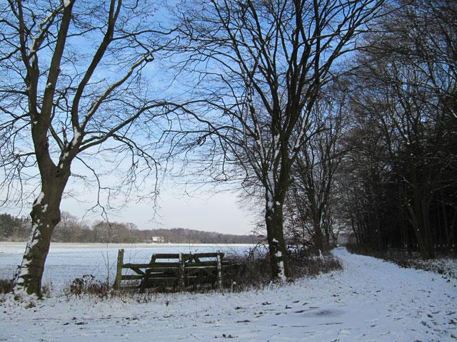 13.12.2012  Schnee!