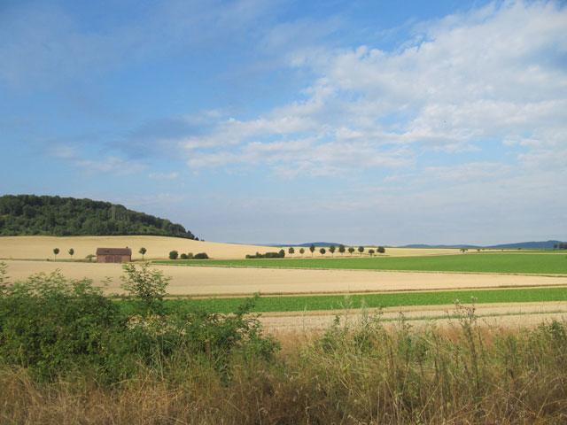 04.08.2013  Thüringer Land