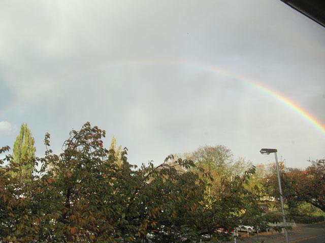 28.10.2013  Regenbogen
