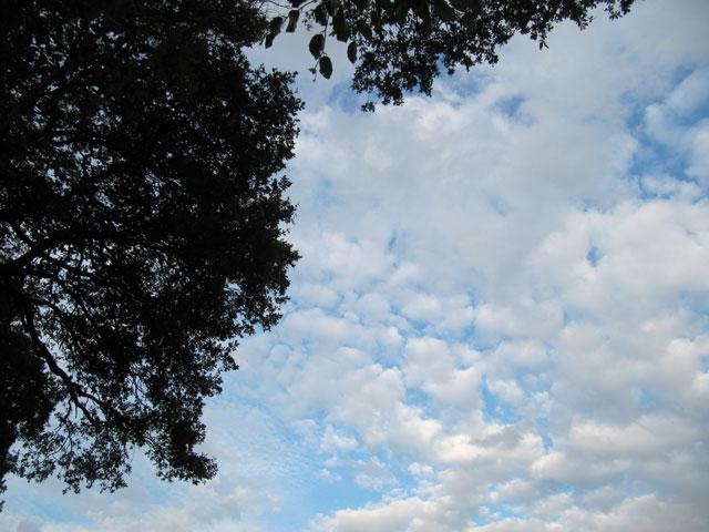 19.10.2014  Wolken