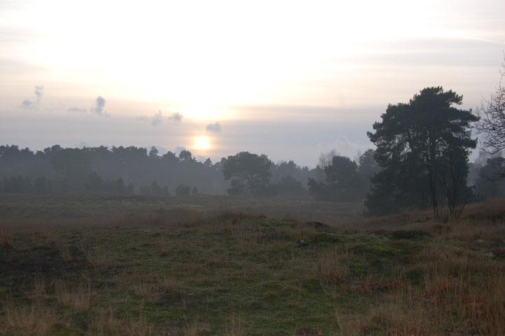 26.12.2014  Westruper Heide