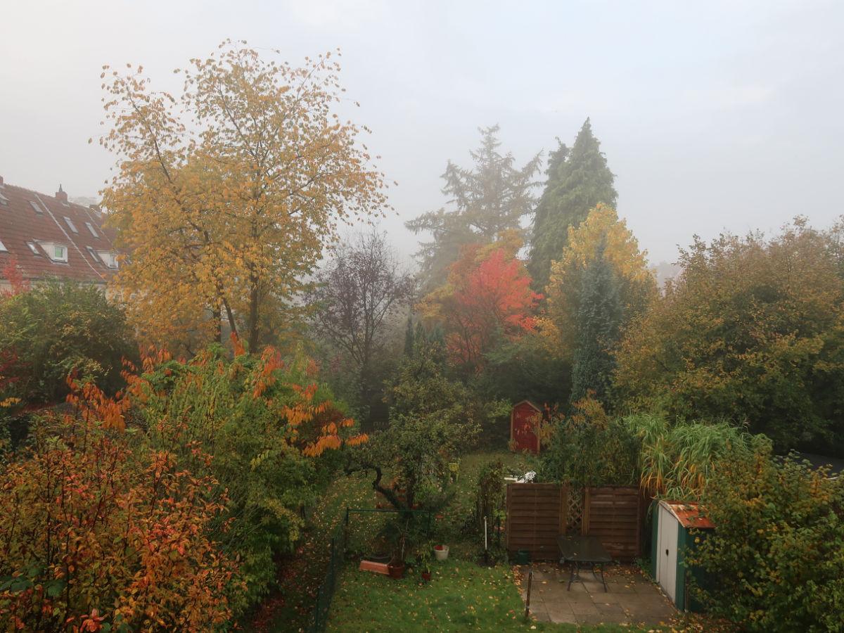 23.10.2020  Nebel
