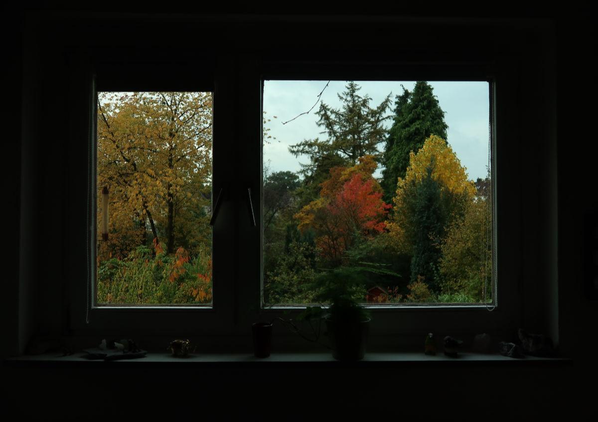 24.10.2020  Fenster