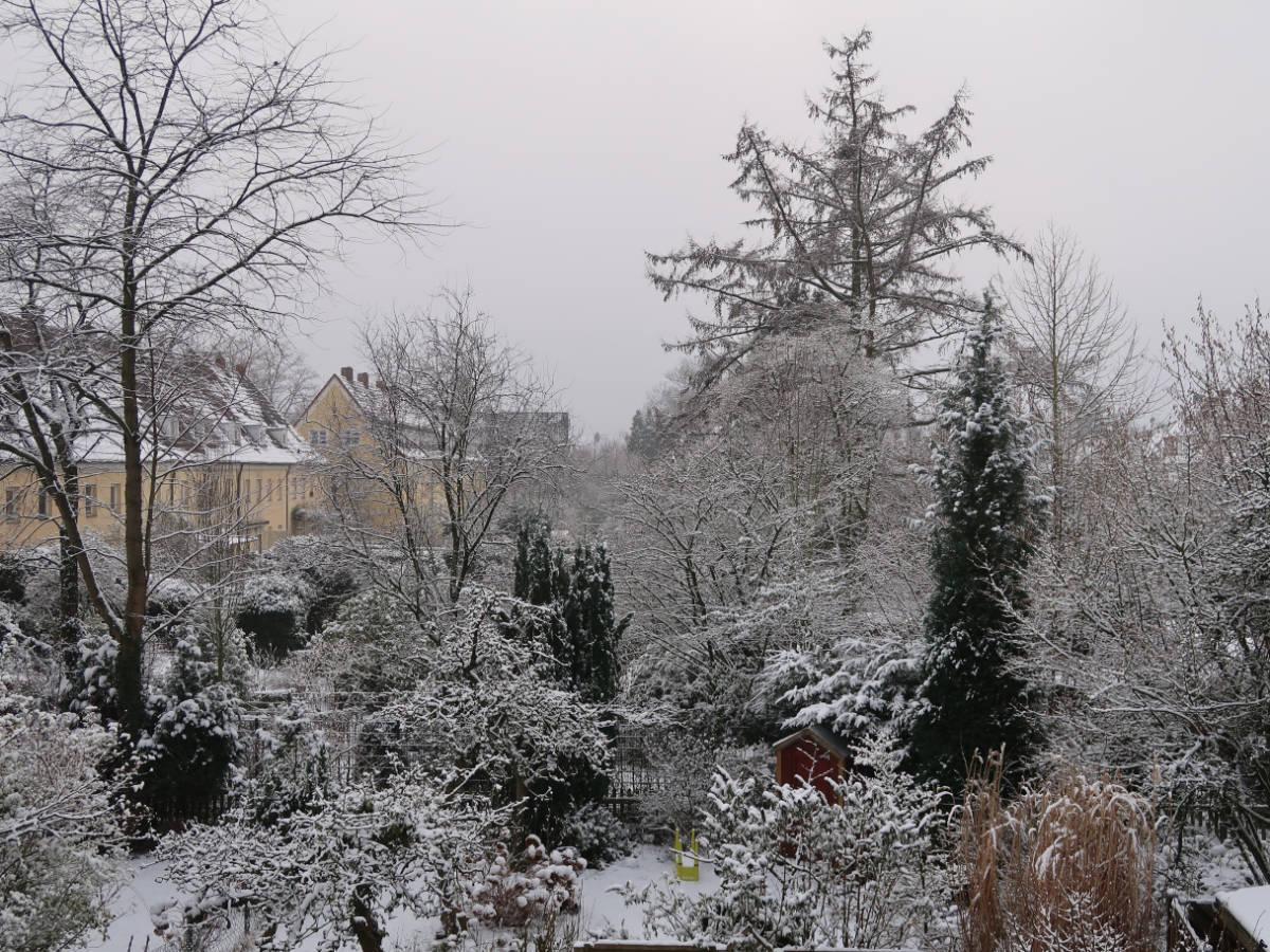 17.01.2021  Schnee