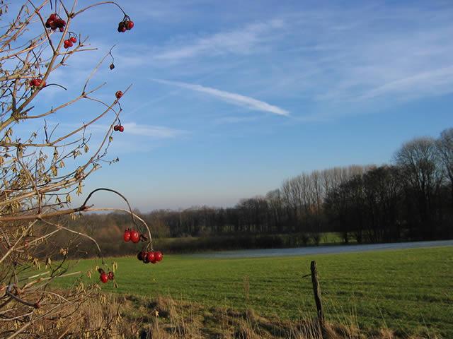 16.01.2005  Nienberge
