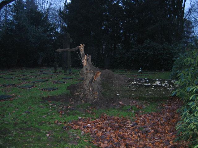11.01.2005  Sentmaringer Park
